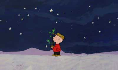 Where to Buy a Charlie Brown Christmas Tree