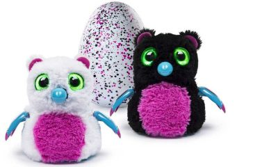 Where to Buy Hatchimals