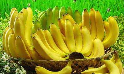 Where to Buy Plantains