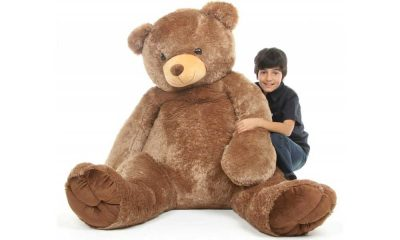 Where to Buy a Huge Teddy Bear